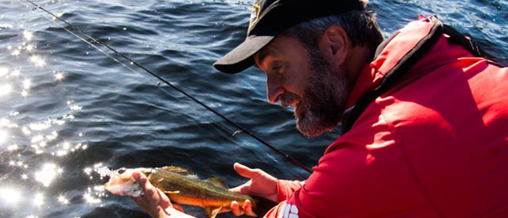 Lawrence Gunther releasing a Walleye